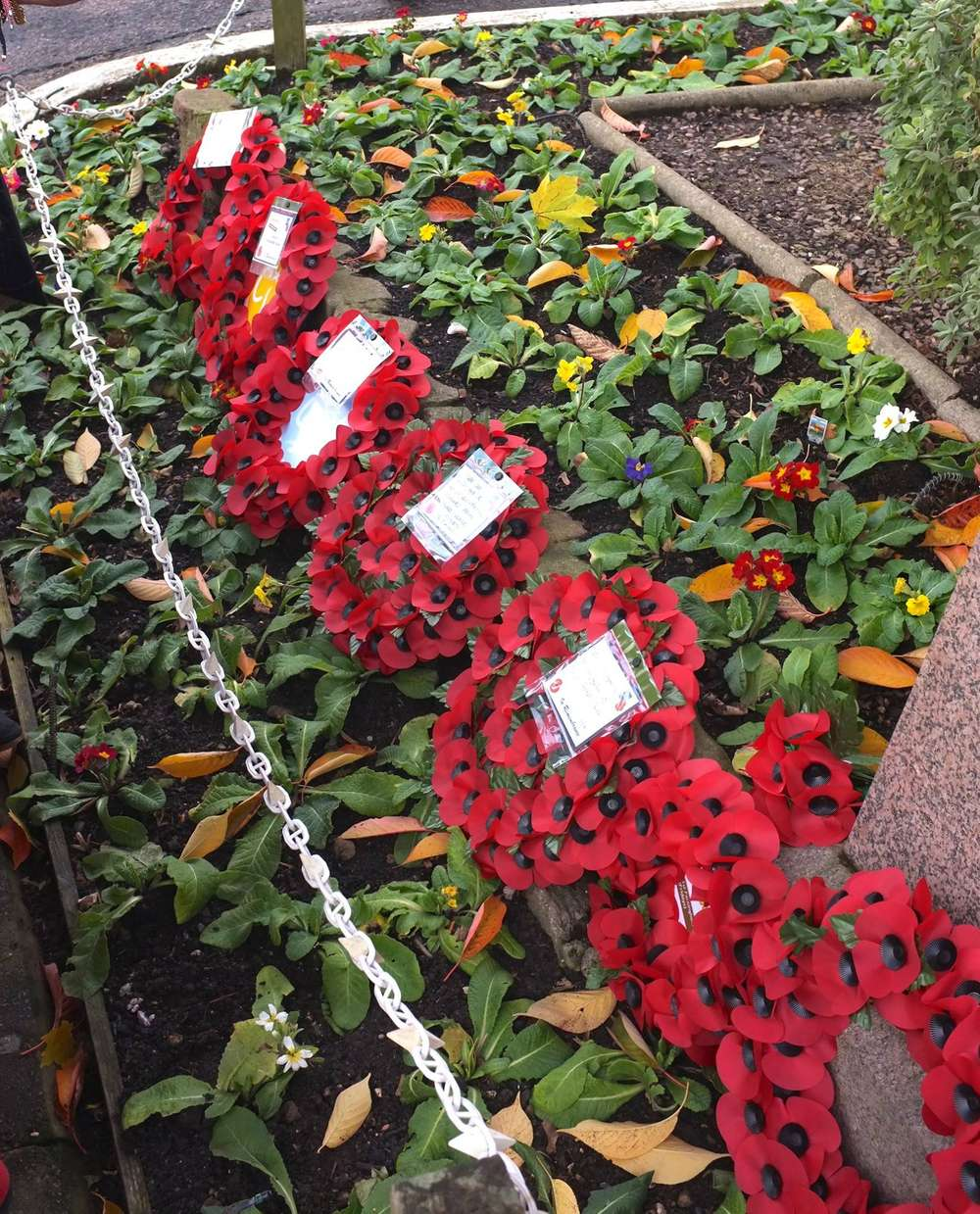Eynsford's Community Gathers for Remembrance Day