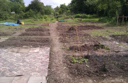 new_allotments